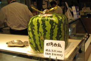 FruitParlor04