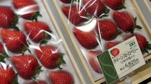 FruitParlor05