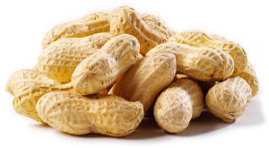 nuts09
